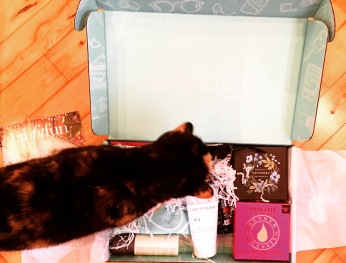 Même le chat approuve la boîte FabFitFun.